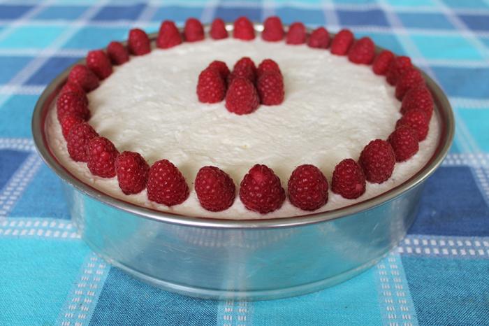 yoghurt-taart-4