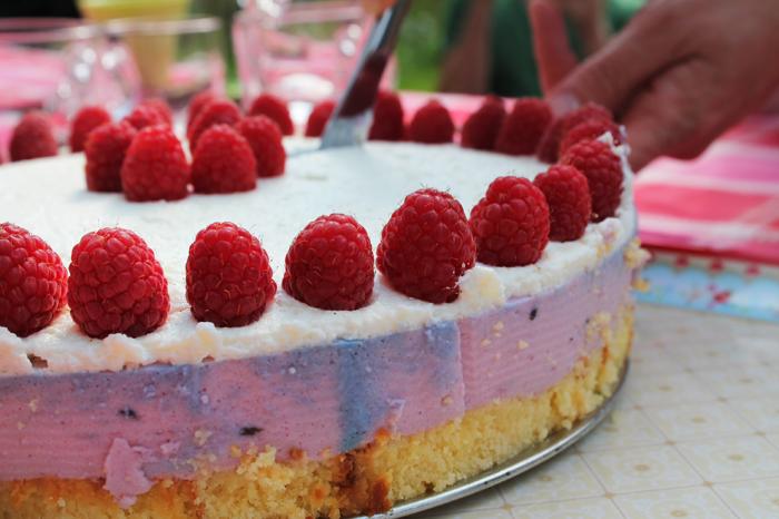 yoghurt-taart-5